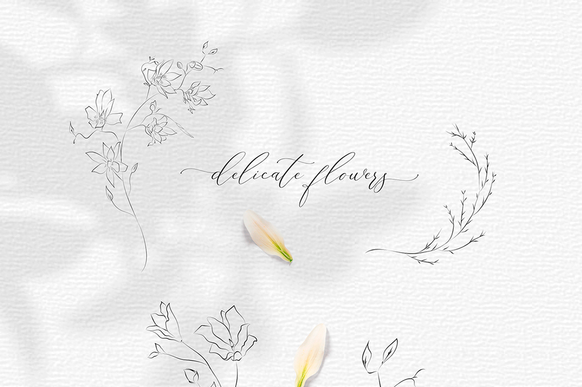 Line Drawing Botanical Wreaths, Plants and Florals