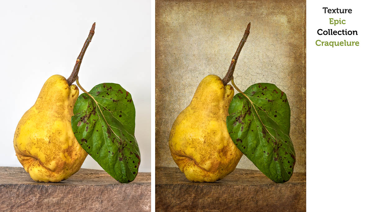 Applying Textures to Enhance your Photography with Leslie Nicole