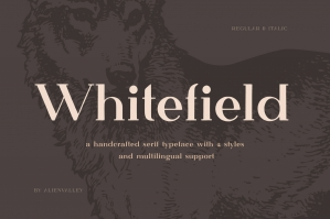 Whitefield - Handcrafted Serif