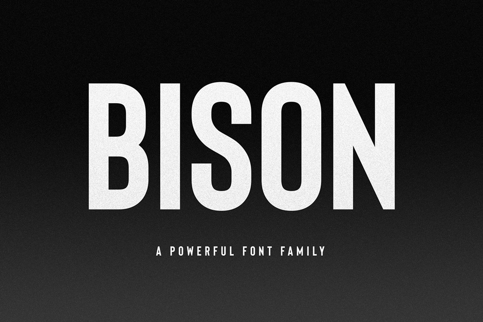 16 Affordable and Professional Sans Serif Fonts