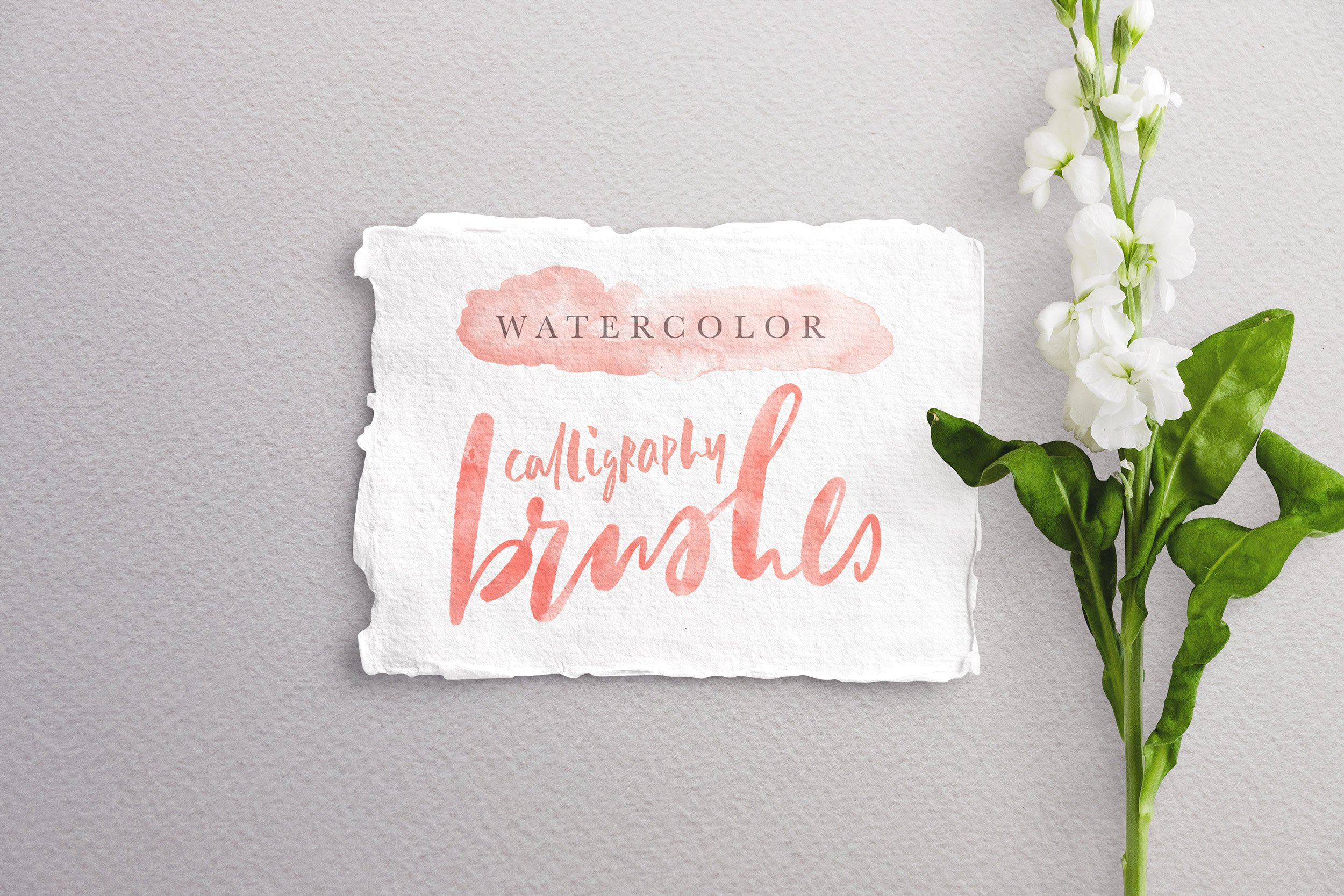 14 Best Procreate Watercolor Brushes