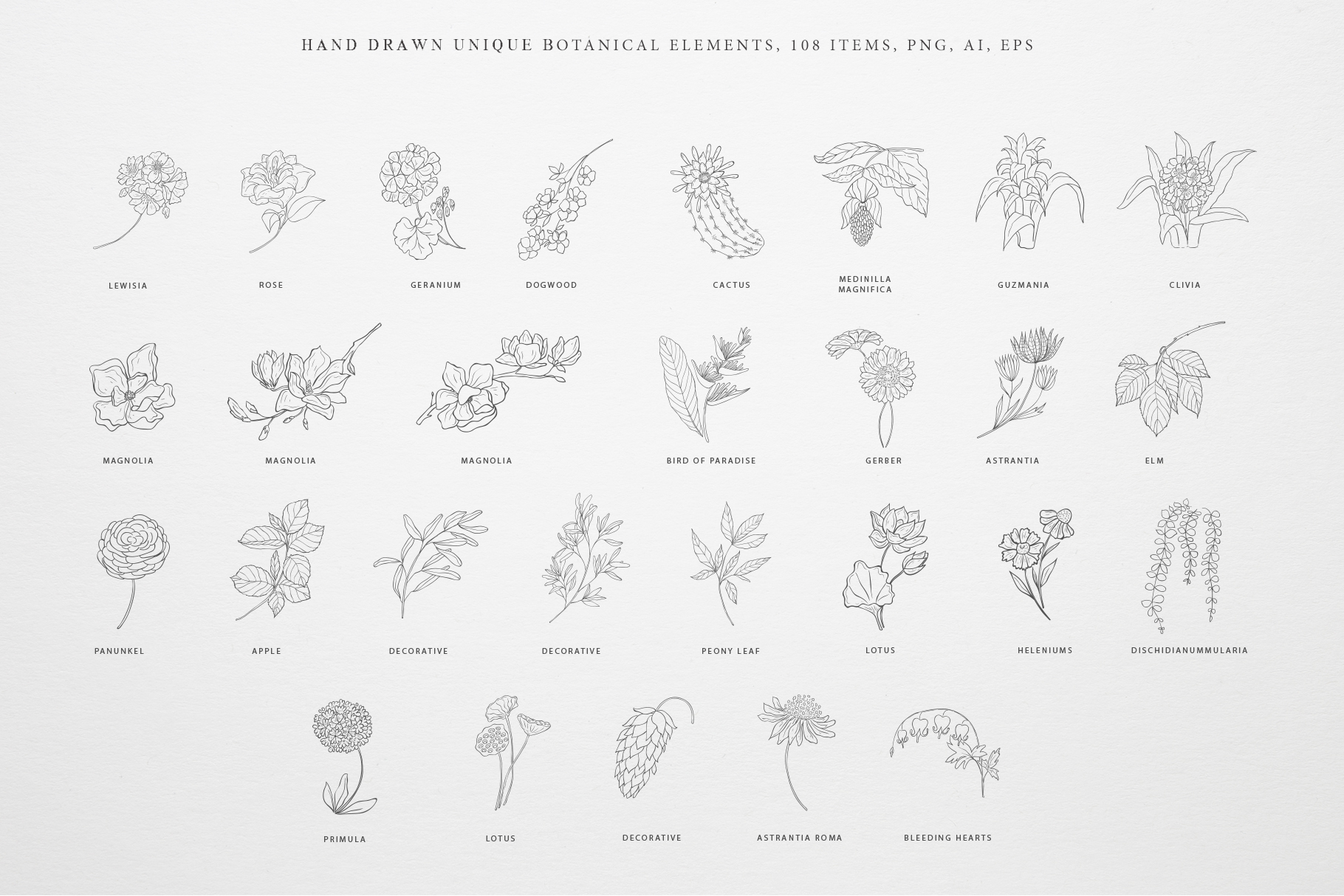 Botany & Moon - Hand Drawn Flowers, Plants, Frames