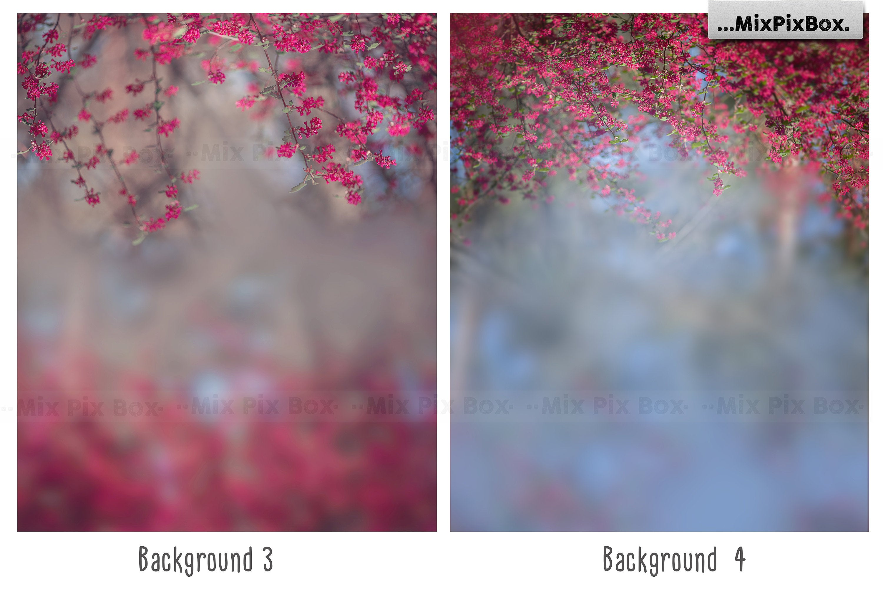Floral Portrait Backgrounds