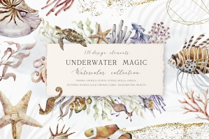 Underwater Magic - Marine Animals, Plants, Frames