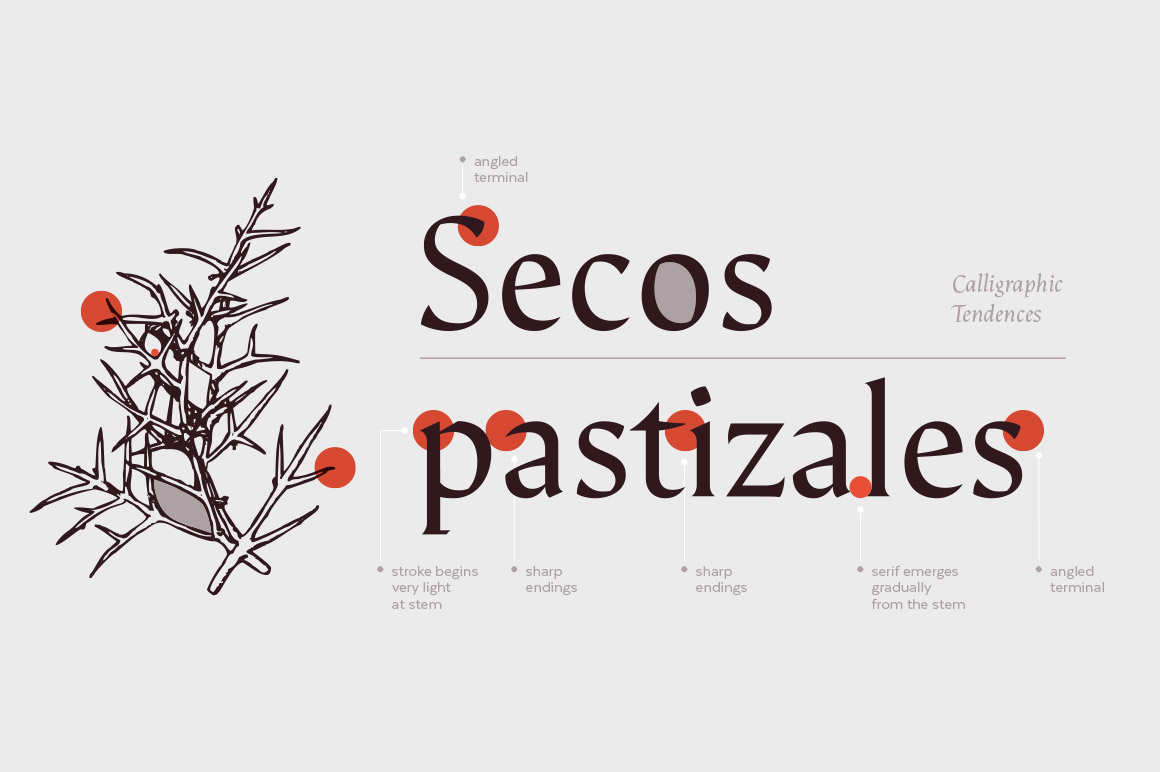 The Deliciously Versatile Font CollectionE