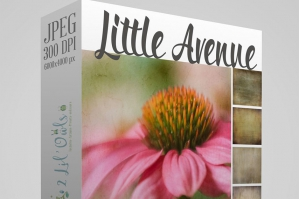 Little Avenue Fine Art Textures