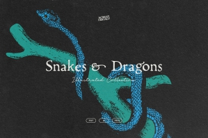 Snakes & Dragons Illustrations