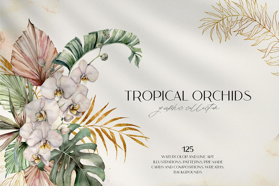Tropical Orchids. Watercolor Graphic Collection