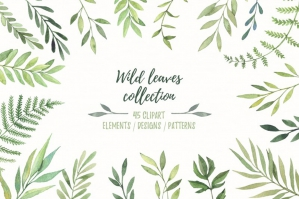 Wild Leaves Clip Art. Watercolor Set