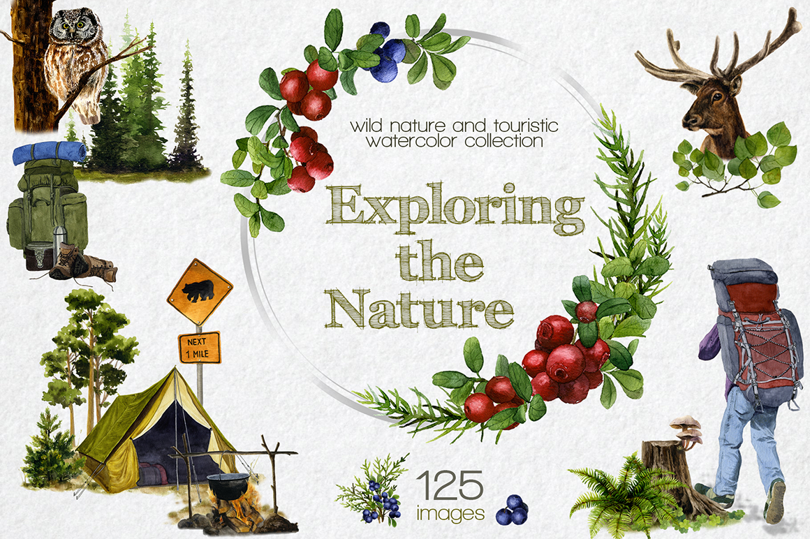 Exploring the Nature Watercolor Collection