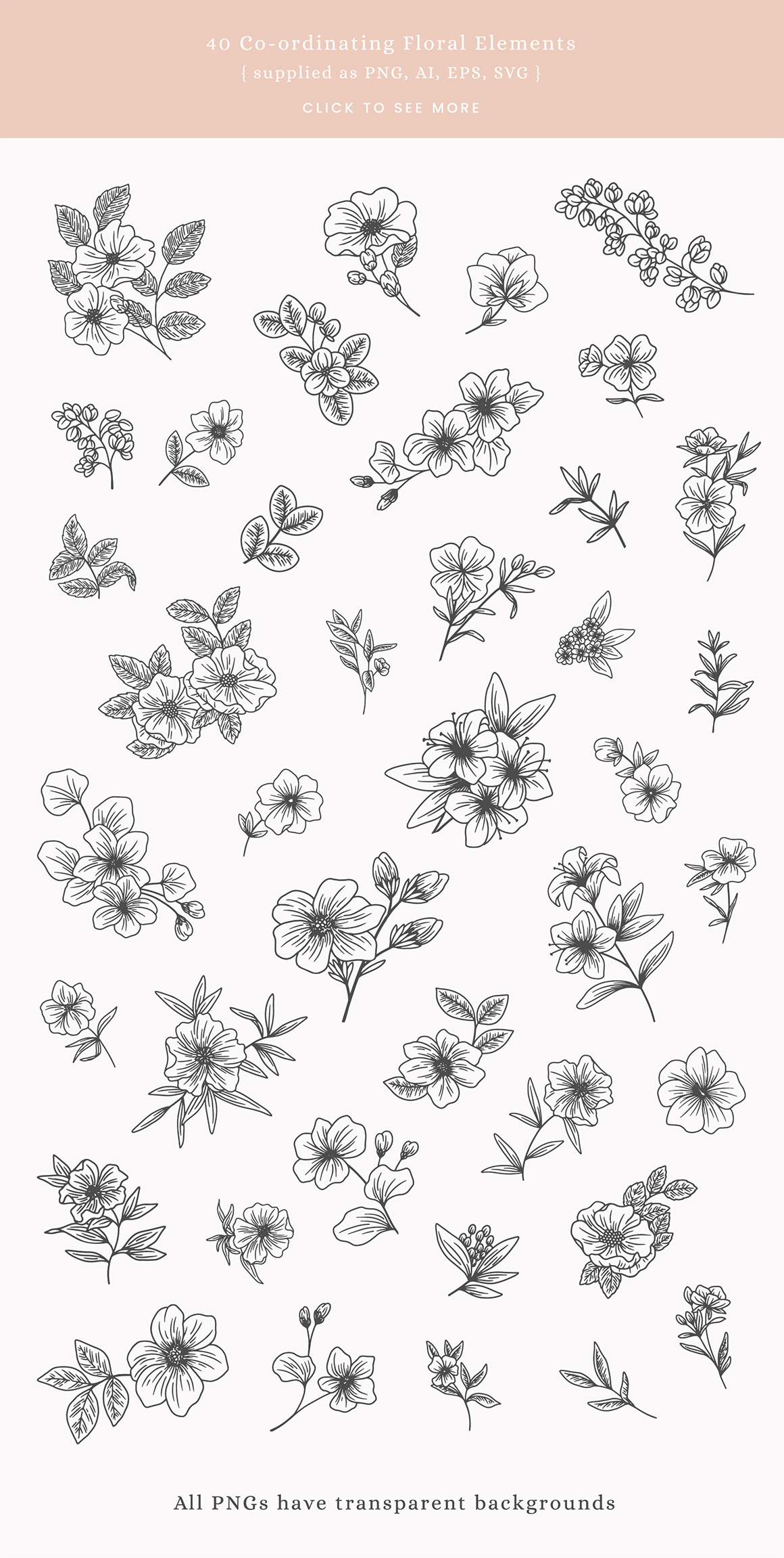 Floral Alphabet Vector Illustrations