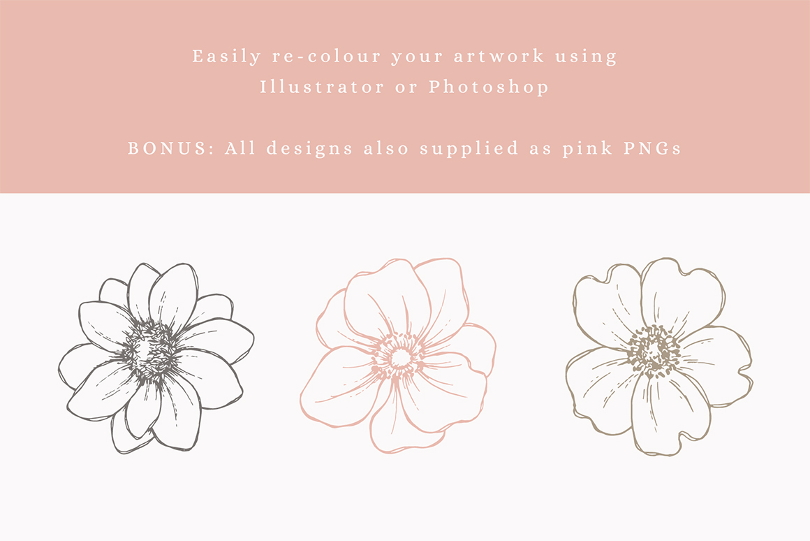 Floral Sketches Vector Illustrations