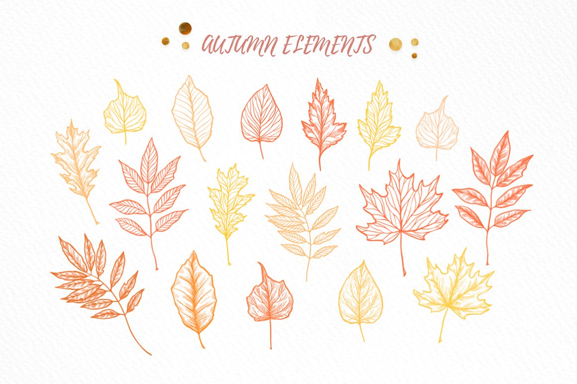 Hand Drawn Autumn Leaves - Fall
