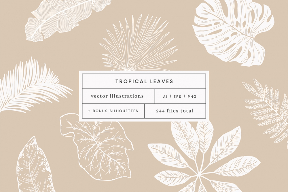 Tropical Leaves Vector Illustrations Design Cuts Free vector icons in svg, psd, png, eps and icon font. tropical leaves vector illustrations design cuts