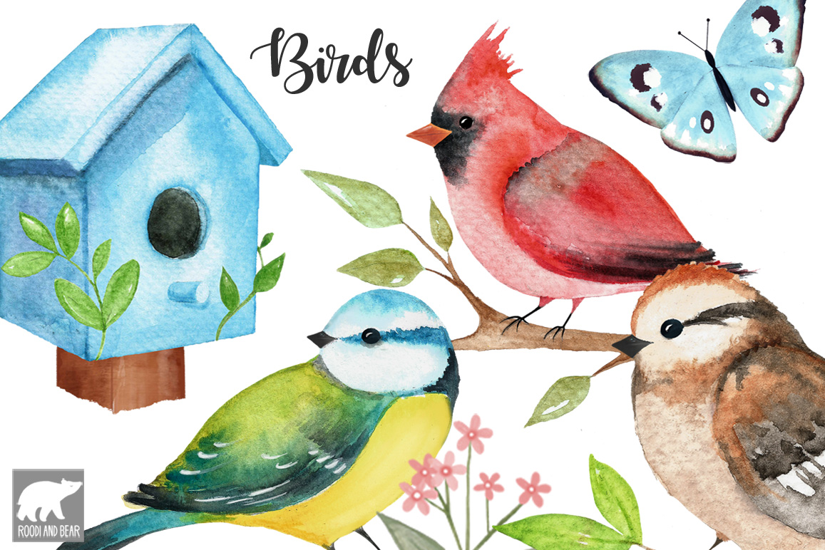 Watercolor Birds and Accessories
