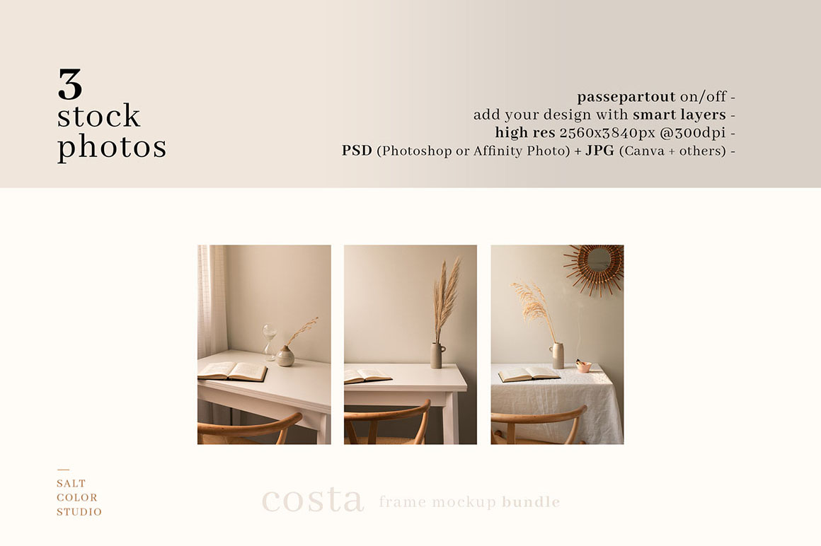 Costa - Frame Mockup Bundle