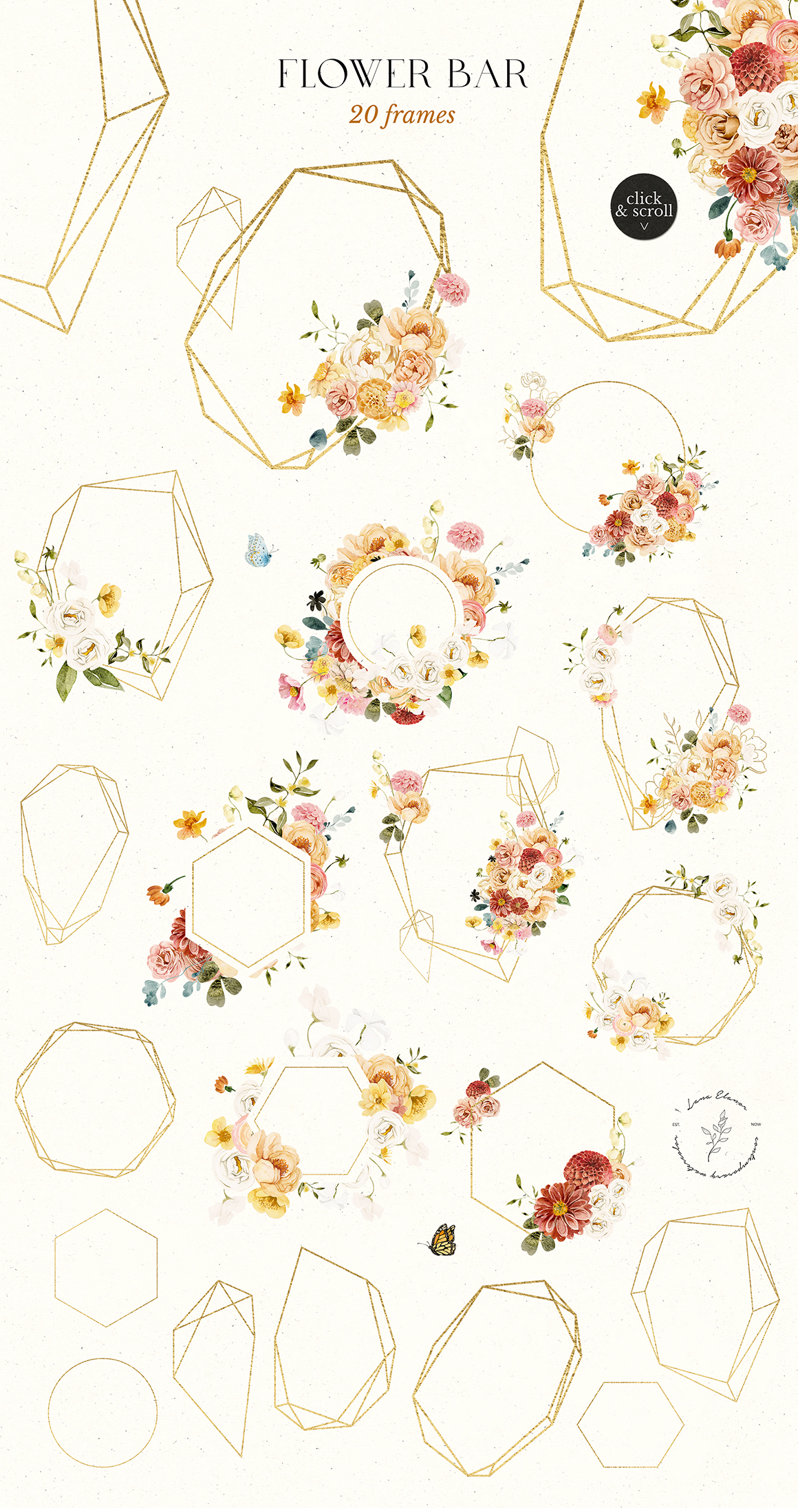 Flower Bar Floral Watercolor Collection