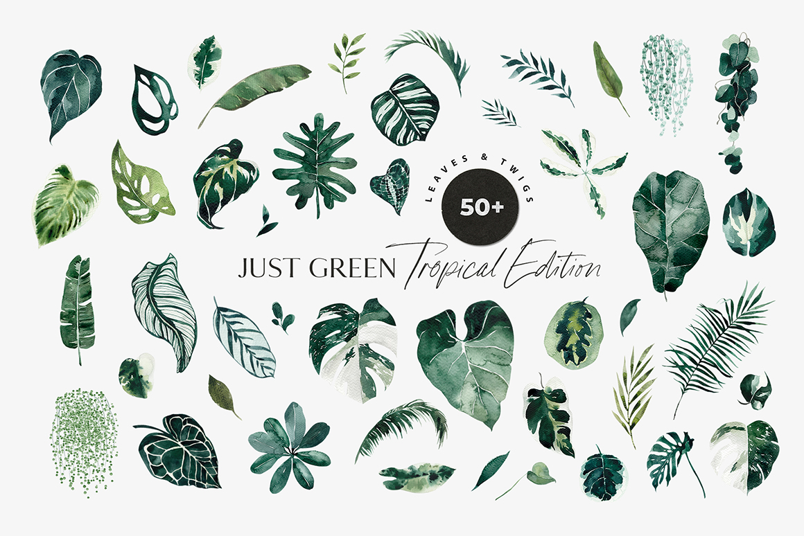 Tropical Leaves Greenery Foliage Design Cuts Tropical leaf palm print, showing various tropical plants together in one poster. tropical leaves greenery foliage design cuts