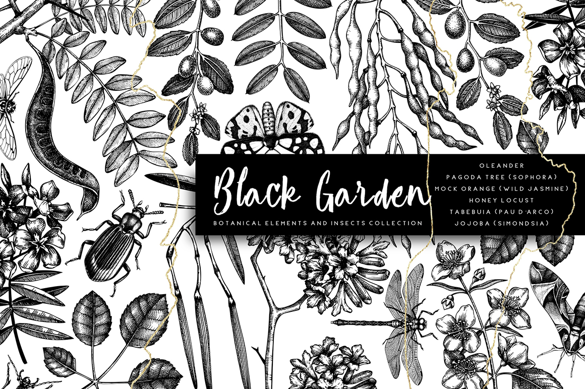 Black Garden, Vector Trees & Insects