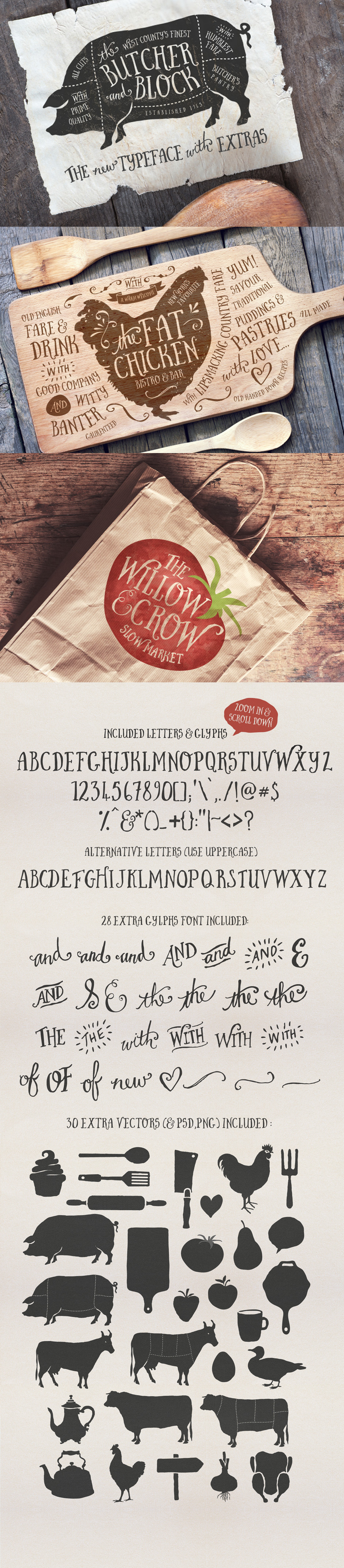 Comprehensive Creative Font Collection